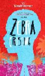 Vandermerwe_zebracrossing